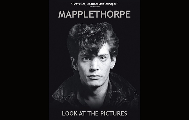 Reviewed! Mapplethorpe: Look At The Pictures