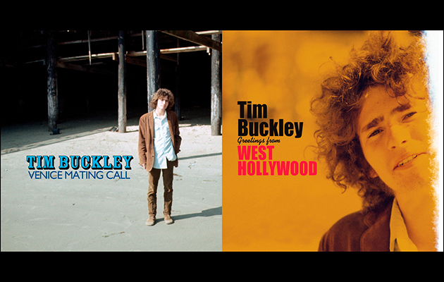 Image result for tim buckley venice mating call""
