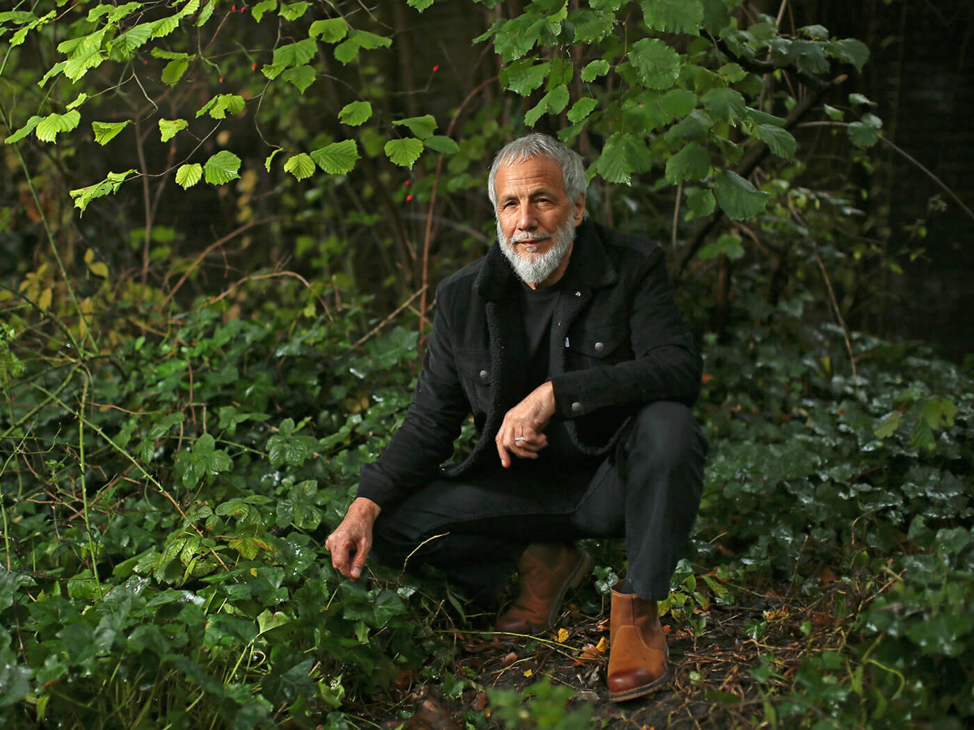 Yusuf / Cat Stevens has re-recorded Tea For The Tillerman